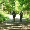 Latest Reviews of Walking the Camino De Santiago with RAW Travel