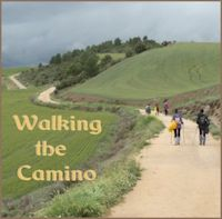 Walking the Camino Peter Kearney